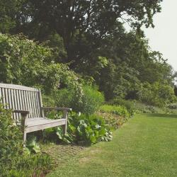 Kaip susikurti nuostabią oazę sode